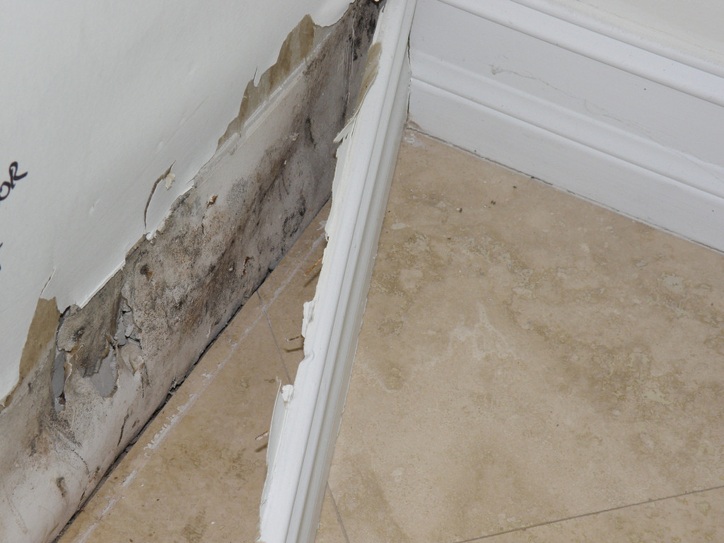 Origins And Classification Of Water Damage In Your Home